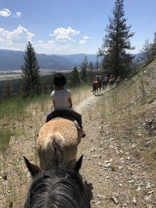Horseback Riding Missoula - Adventure Missoula Trail Rides
